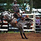 Hold on Cowboy by Lindsay Woolnough (Oram)