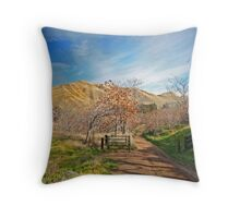 Country Road Throw Pillow