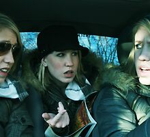 The Clone Series: Road Trip by Danielle  Kay