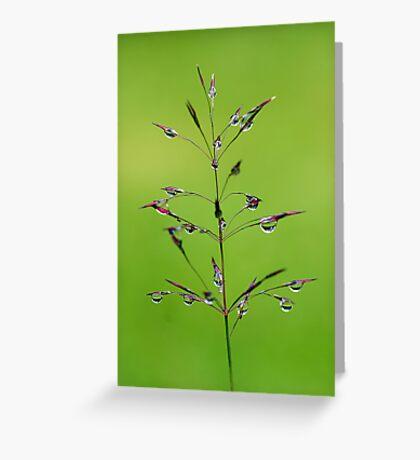 Fairyland Greeting Card