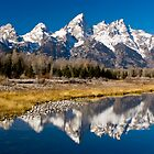 Grand Teton National Park,Wyoming, USA. by Teddy  Sugrue