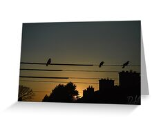 Birds on the wire Greeting Card