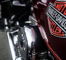 Harley Davidson Logo by DamoMcc