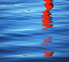 Buoy Reflection ~ Natural Abstract by Laurie Minor