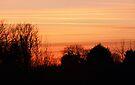 Winter Evening Sky 2 by Franco De Luca Calce