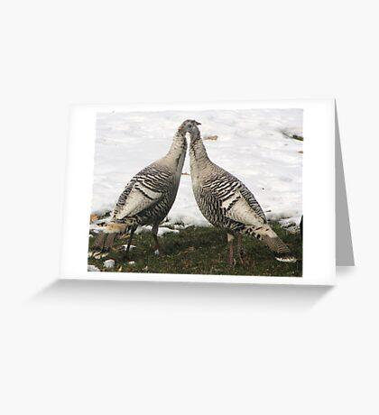 Jive Turkeys Greeting Card