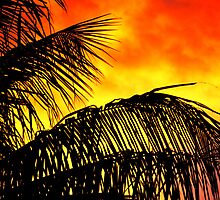 Fire in the sky! by cromagnon