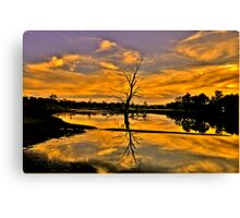 Wetland Dreaming - Wonga Wetlands, Albury NSW - The HDR Experience Canvas Print