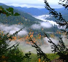 Valley Fog Lifting by OregonCurly