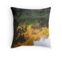 River Reflection  Throw Pillow