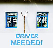 Driver needed by luckypixel