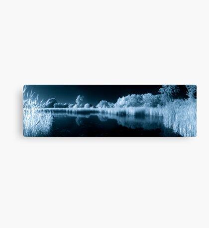 Wetland Pond in IR Canvas Print