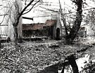 Chilworth Gunpowder Mills by Colin  Williams Photography