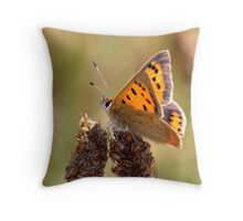Small Copper Butterfly Throw Pillow