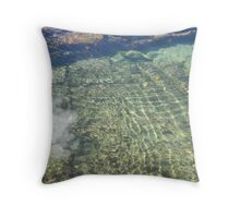 Fluid Trace 3 Throw Pillow