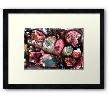 lava lumps # 2 Framed Print
