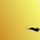 F111 Sunset by Greg Halliday