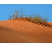 kalahari Dune Photographic Print