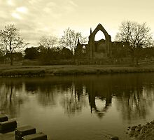 Bolton Priory 2 by WatscapePhoto