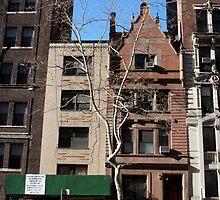 A Tree Grows In Brooklyn by zen107