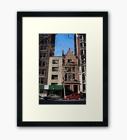 A Tree Grows In Brooklyn Framed Print