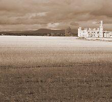 Ducketts Grove Castle by John Quinn