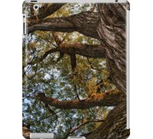 REACHING THE SKY [iPad cases/skins] iPad Case/Skin