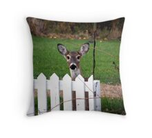 Behind the picket fence Throw Pillow