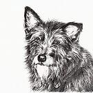 Terrier by L K Southward