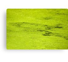 How Much Scum Could a Pond Scum Scum, If a Pond Scum Could Scum Scum? Solved! Canvas Print