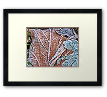 """ Frosted Leaves"" Framed Print"