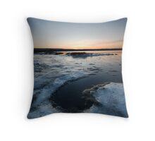Icy Shoreline Throw Pillow