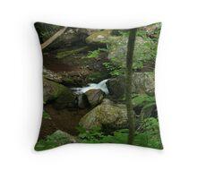Mineral Creek Throw Pillow