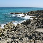 Coast of Cozumel by CJBNase