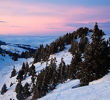 Pink Sky by Sylvain Girard