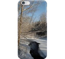 Snow Day iPhone Case/Skin