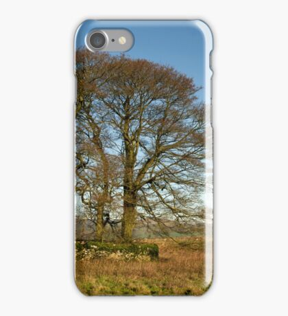 Hill top trees in Derbyshire iPhone Case/Skin