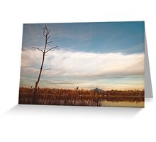Lake Cassidy in March Greeting Card