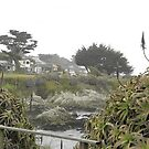 Pacific Grove by Rugirl