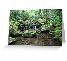 Cool waters of Mineral Creek Greeting Card