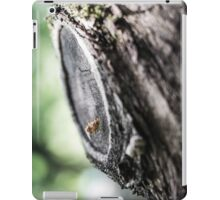 VOYEUR [iPad cases/skins] iPad Case/Skin