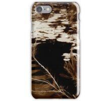 The Pond iPhone Case/Skin