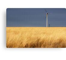 As The Wind Blows Through The Grass Canvas Print