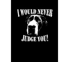 Pit bull love  Photographic Print