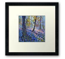 Brierfield Bluebells Framed Print