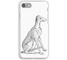 A Study of Boaz iPhone Case/Skin