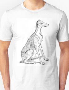 A Study of Boaz T-Shirt