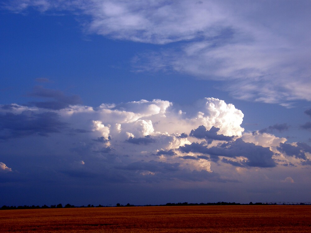 Storm rolling across the prairie by Melissa  W