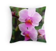 Maui Pink Lights Throw Pillow