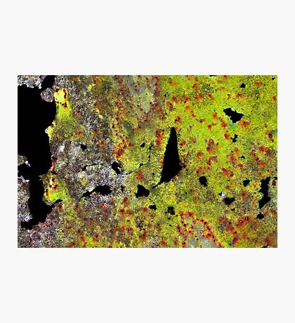 Google Earth Photographic Print